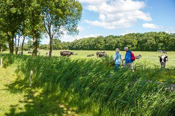 Ostfriesland-Wanderweg