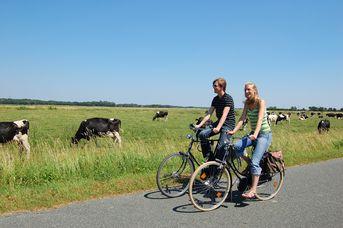 Jan-Schüpp Fahrradweg