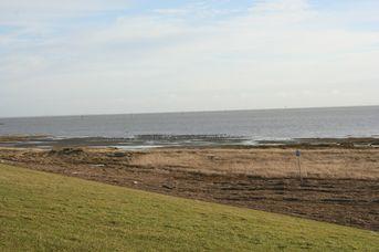 Polder-Wattweg