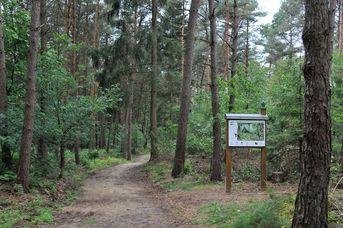 Molbergen - Entdeckertour mit dem Rad   kurze Rundtour