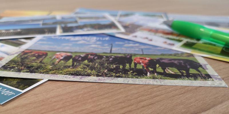 Postkarten schreiben