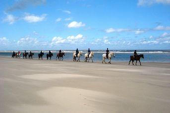 Wald-, Strand- und Wattritt auf der Insel Langeoog